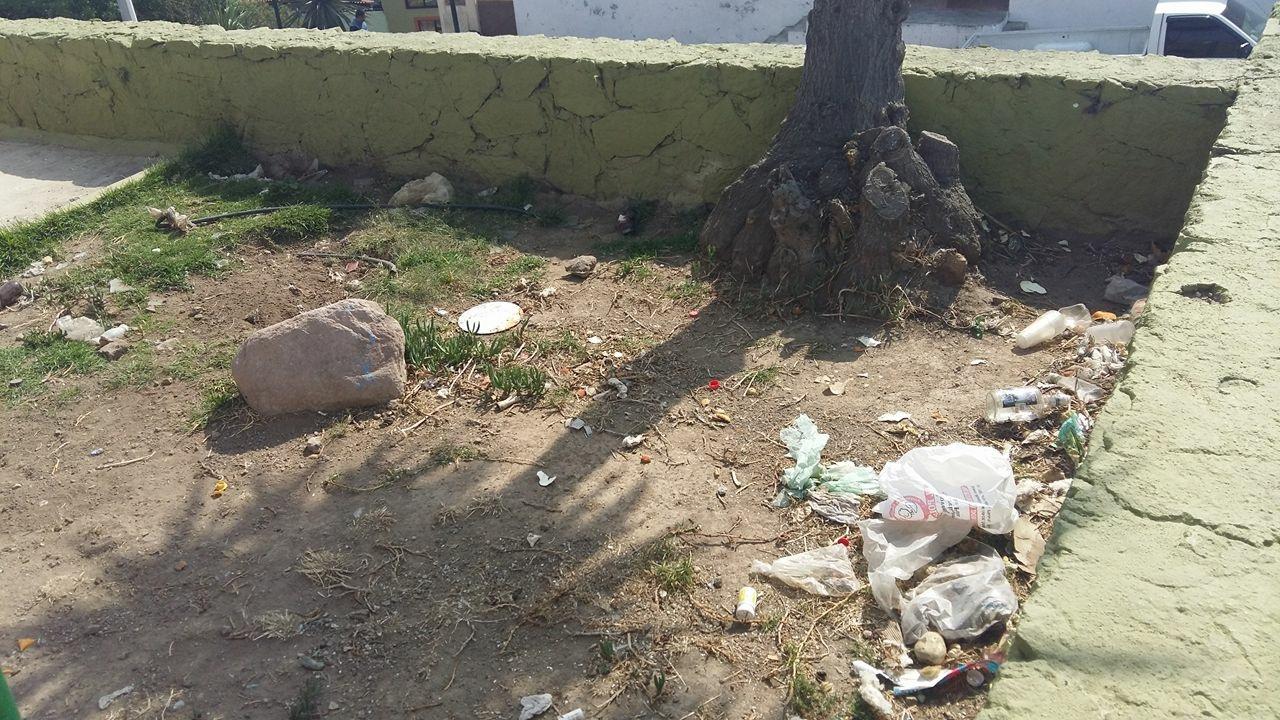 La basura en las calles es la principal fuente de alimento para estos roedores