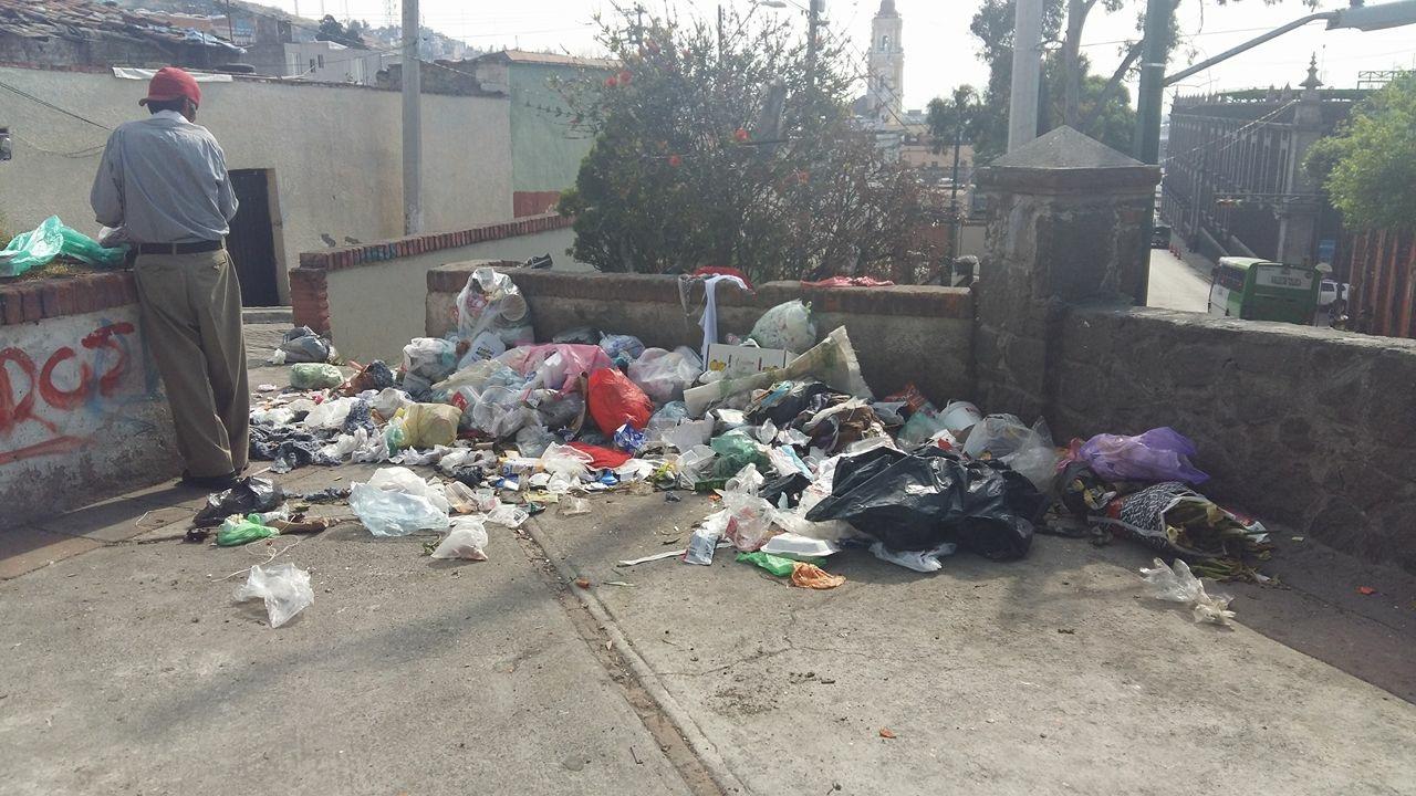 La basura en las calles es la principal fuente  de alimento de los roedores