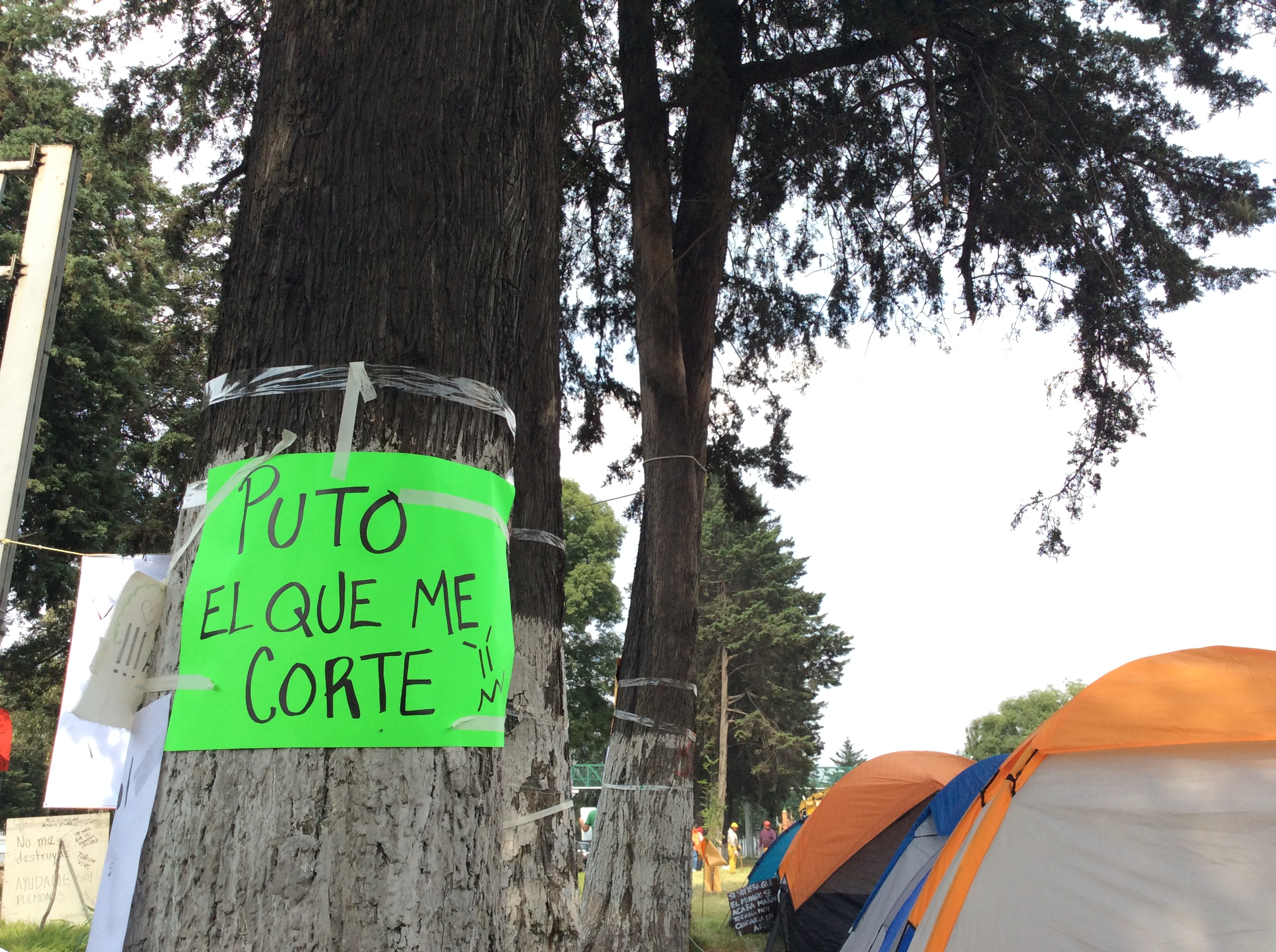 """""""Clasista y obsoleto, el puente deprimido para Galerías Toluca"""""""