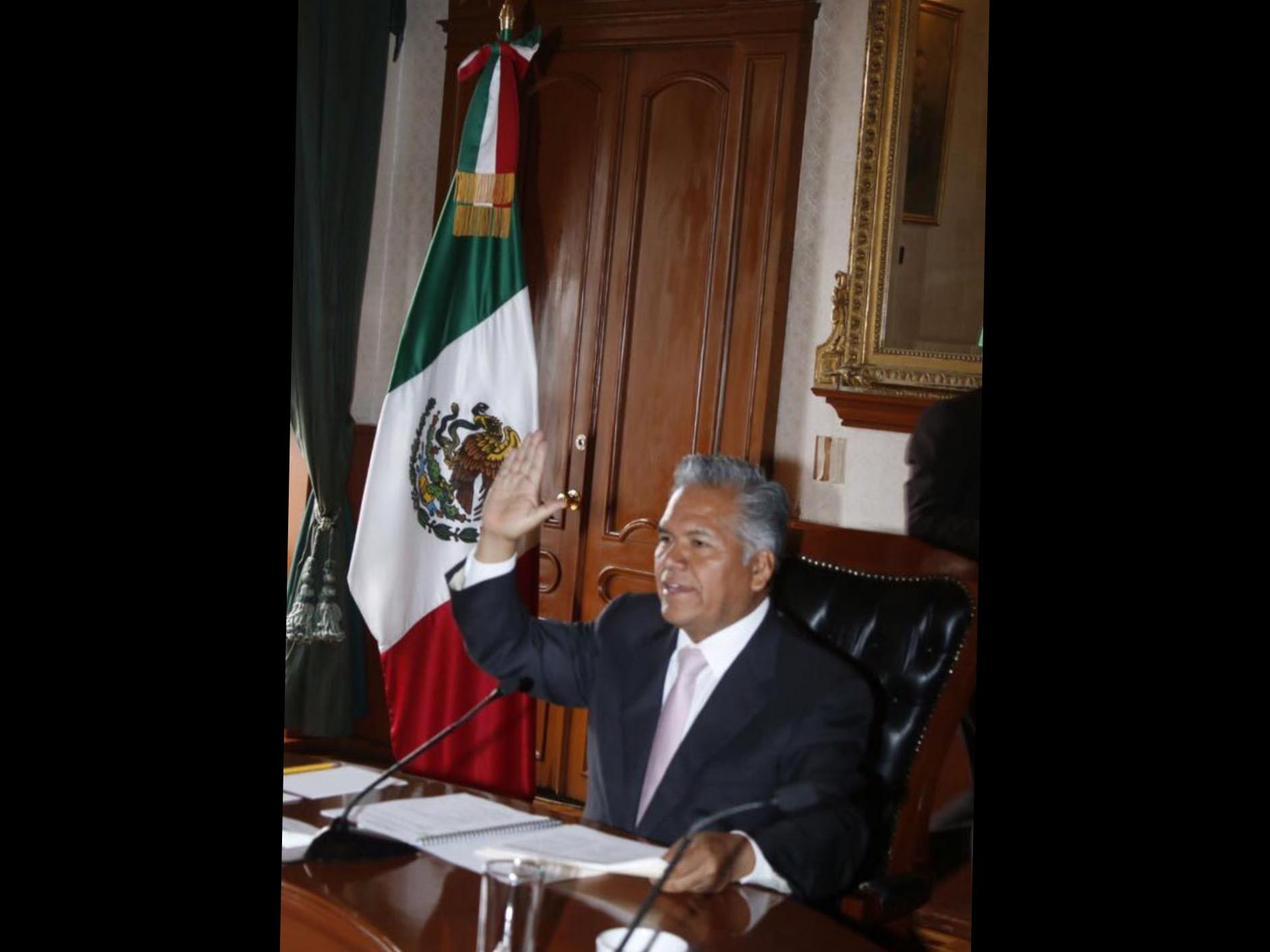 """""""Se lanza"""" Zamora contra protectoras de animales"""