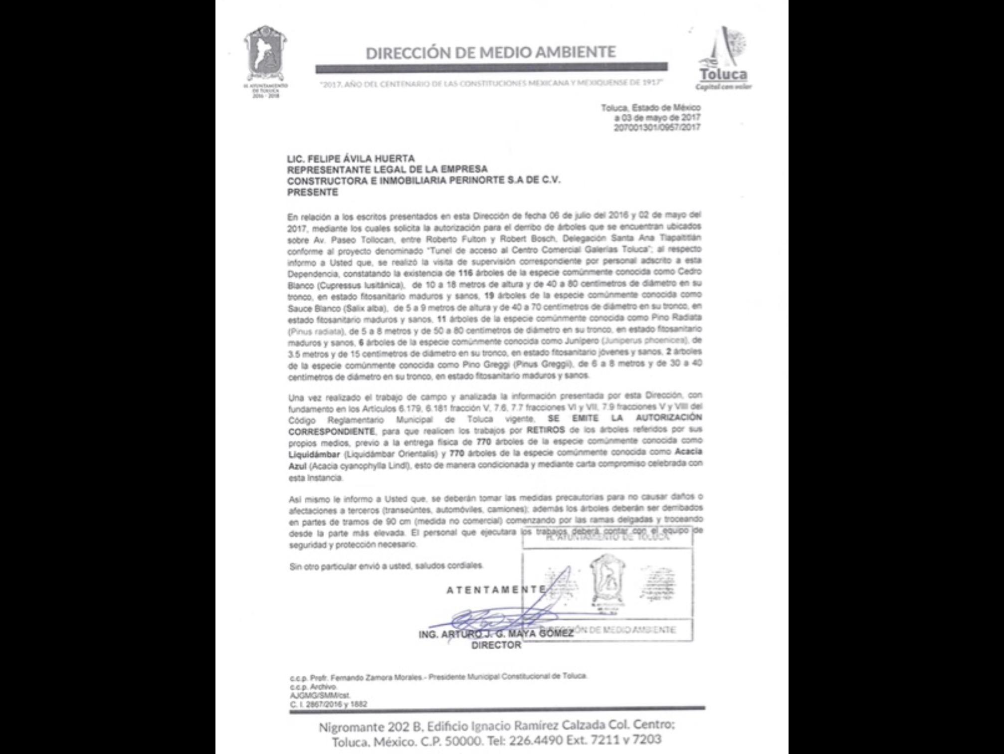Administración de Zamora sí avaló tala en Paseo Tollocan