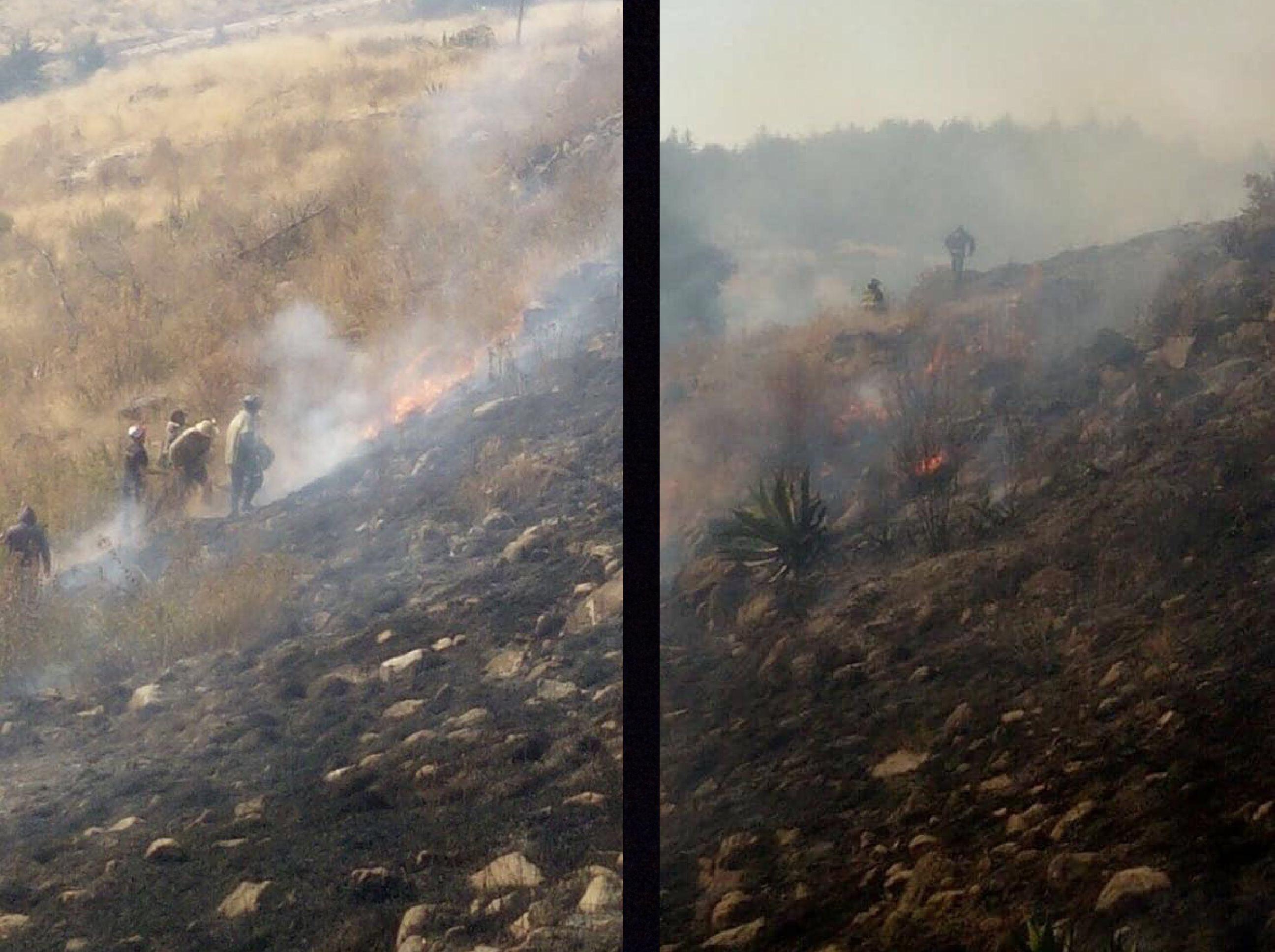 Arrasa fuego con 20 hectáreas de parque en Toluca