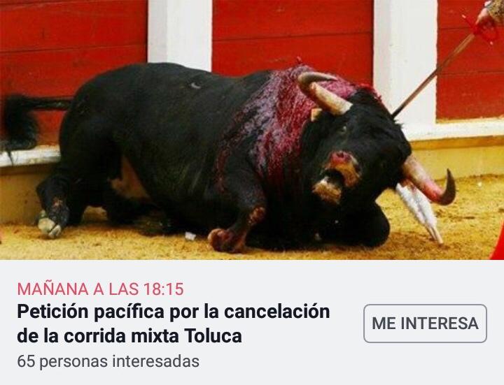 Se salta corrida de toros a gobierno de Toluca
