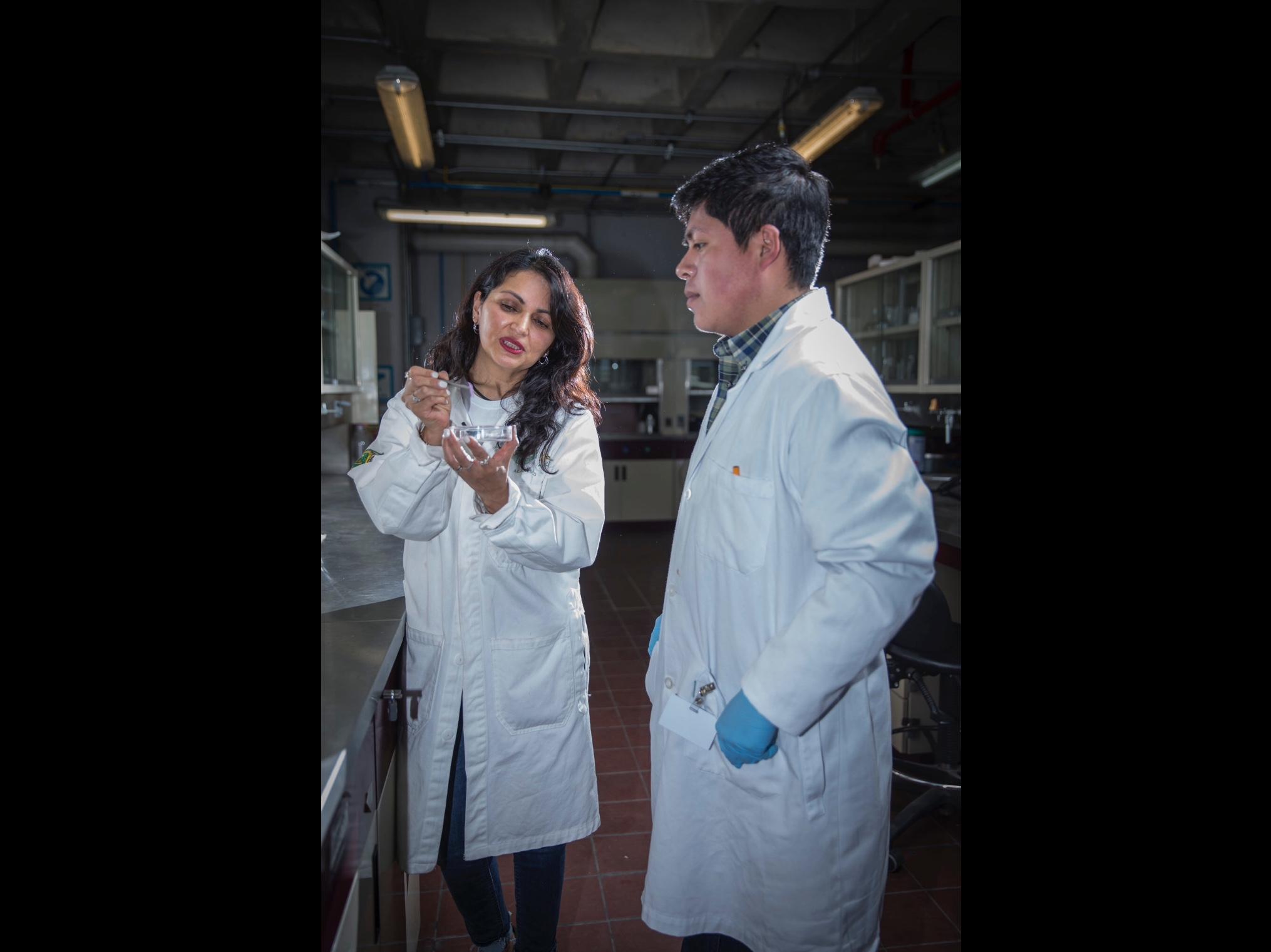 Va UAEM por otra patente ante Instituto Mexicano de la Propiedad Industrial