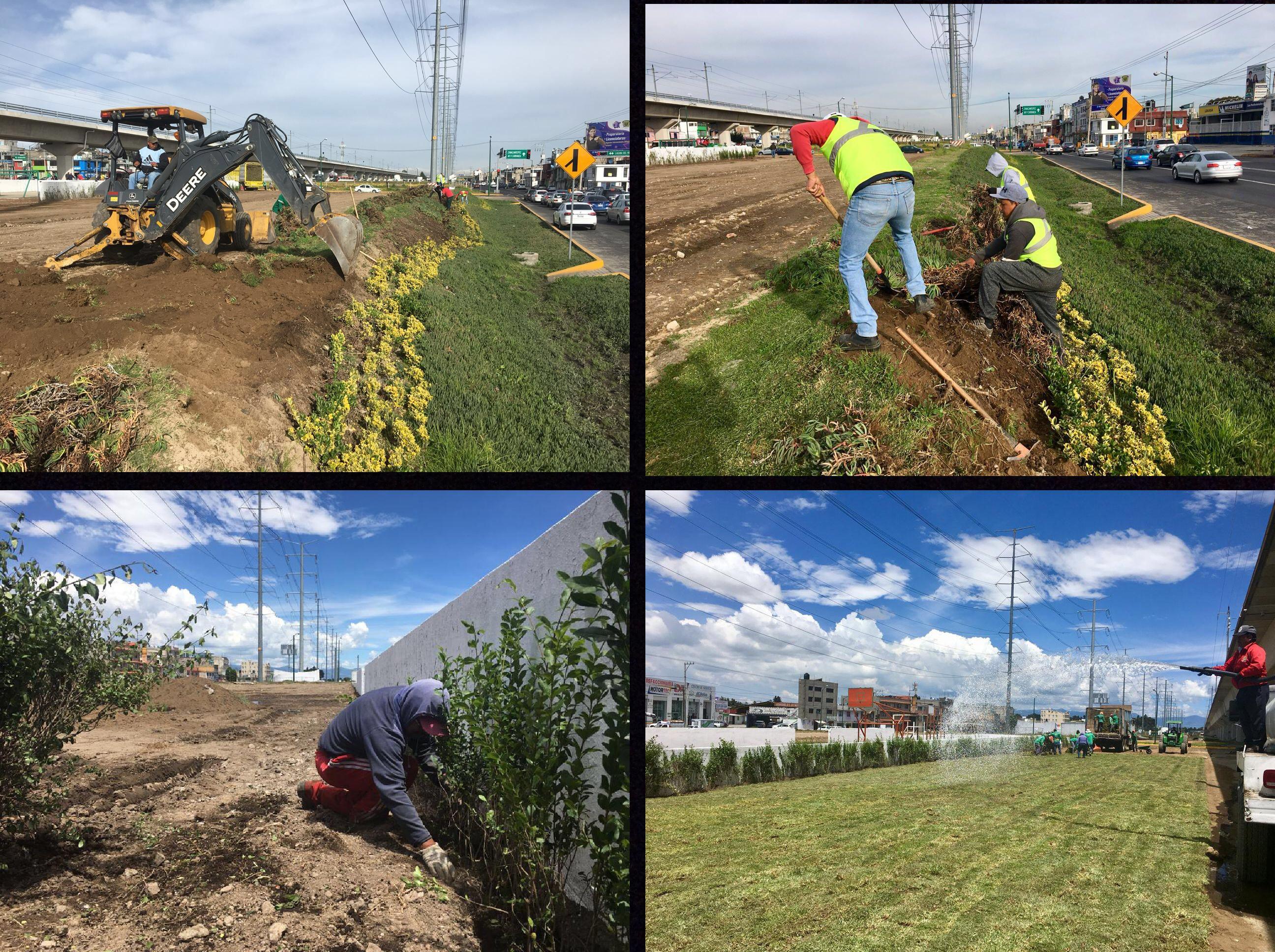 """Hacen """"reencarpetado verde"""" sobre Las Torres en Toluca"""