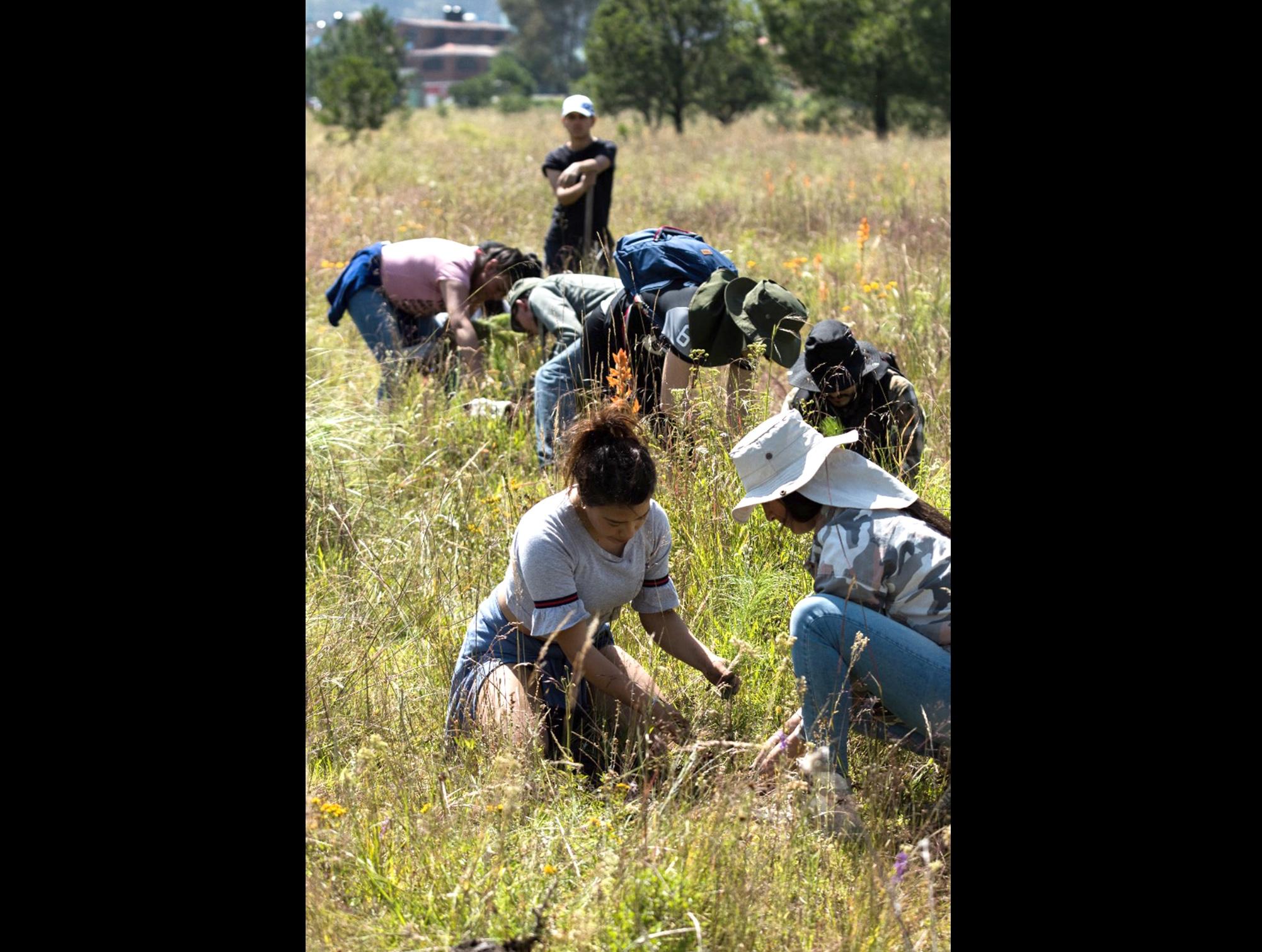 Universitarios adoptan predio del Parque Estatal Sierra Morelos