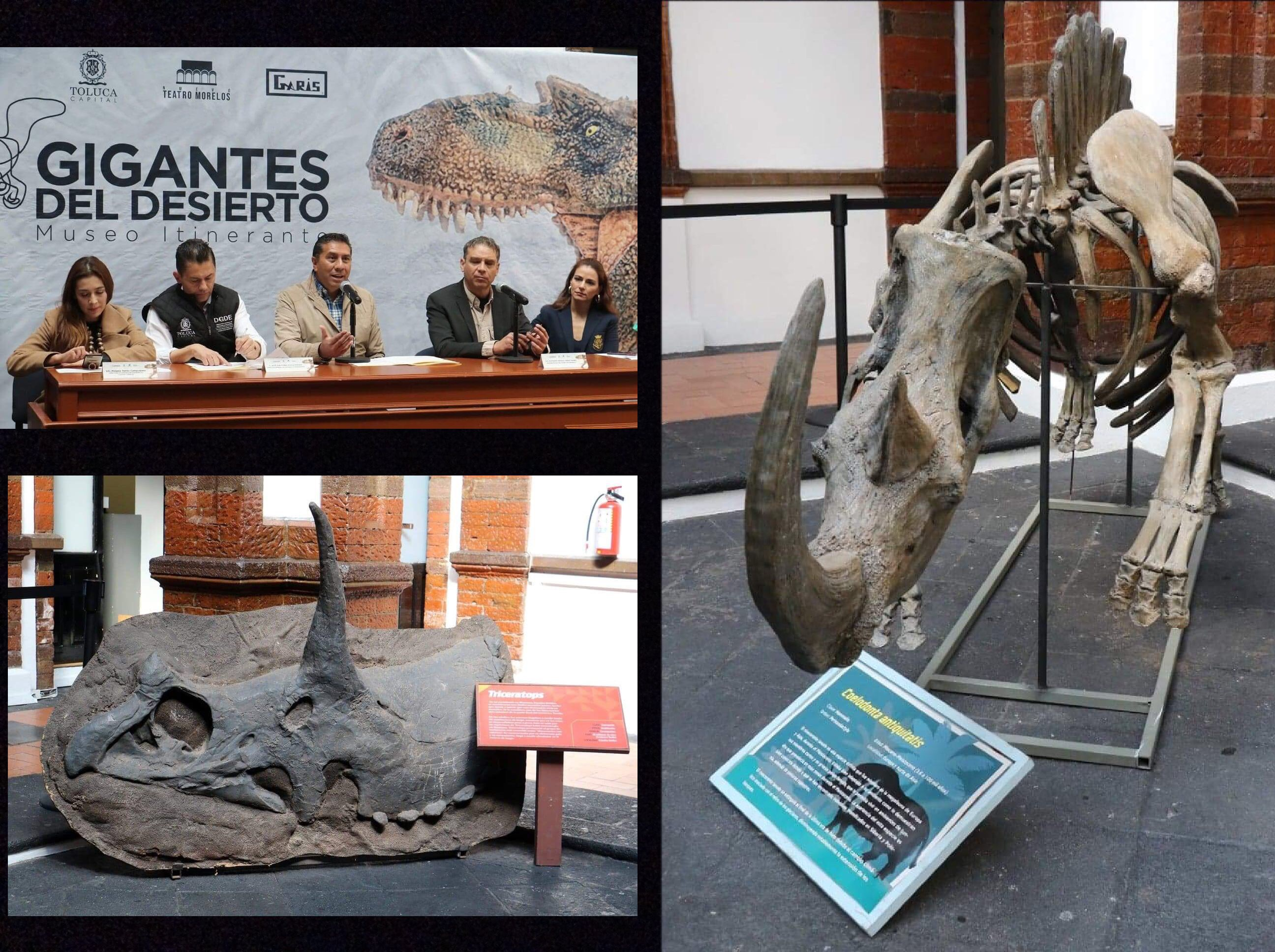 Llega a Toluca Gigantes del Desierto, Museo Itinerante