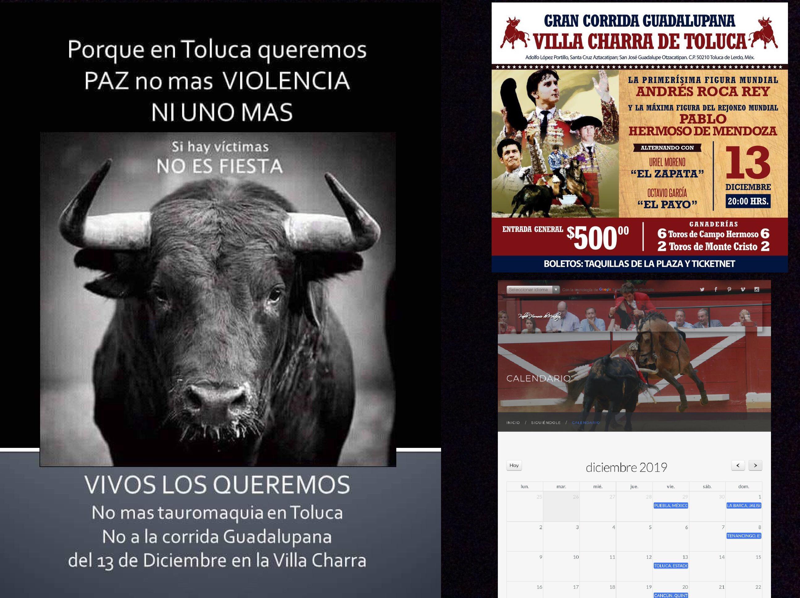 Correrá sangre de toro en Villa Charra de Toluca