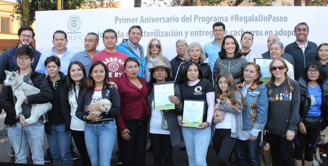 Tendrá Toluca hospital para perros y gatos