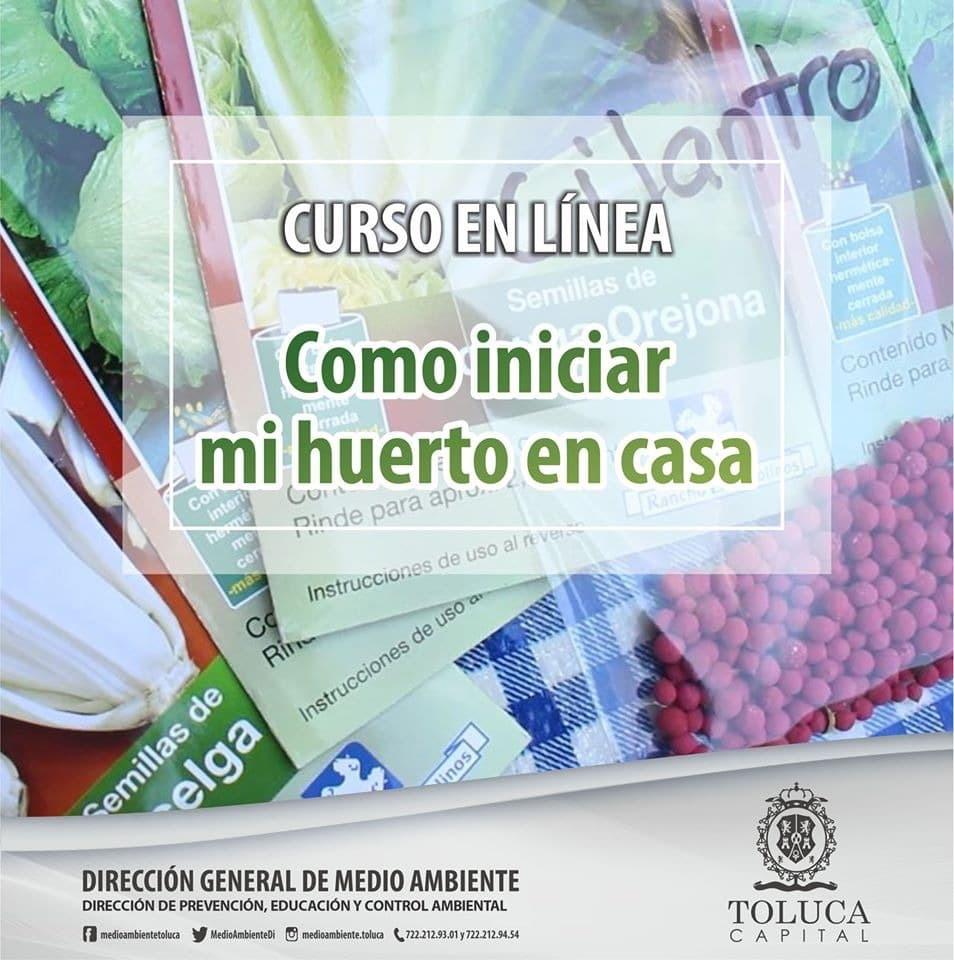 """Abre Toluca talleres """"verdes"""" y """"en línea"""""""